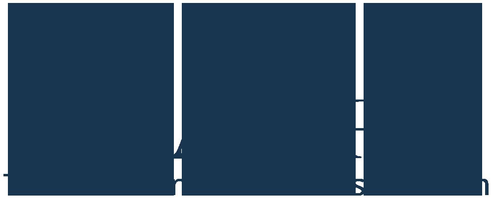 AA-ISP 2019